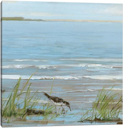 Afternoon On The Shore II Canvas Art Print