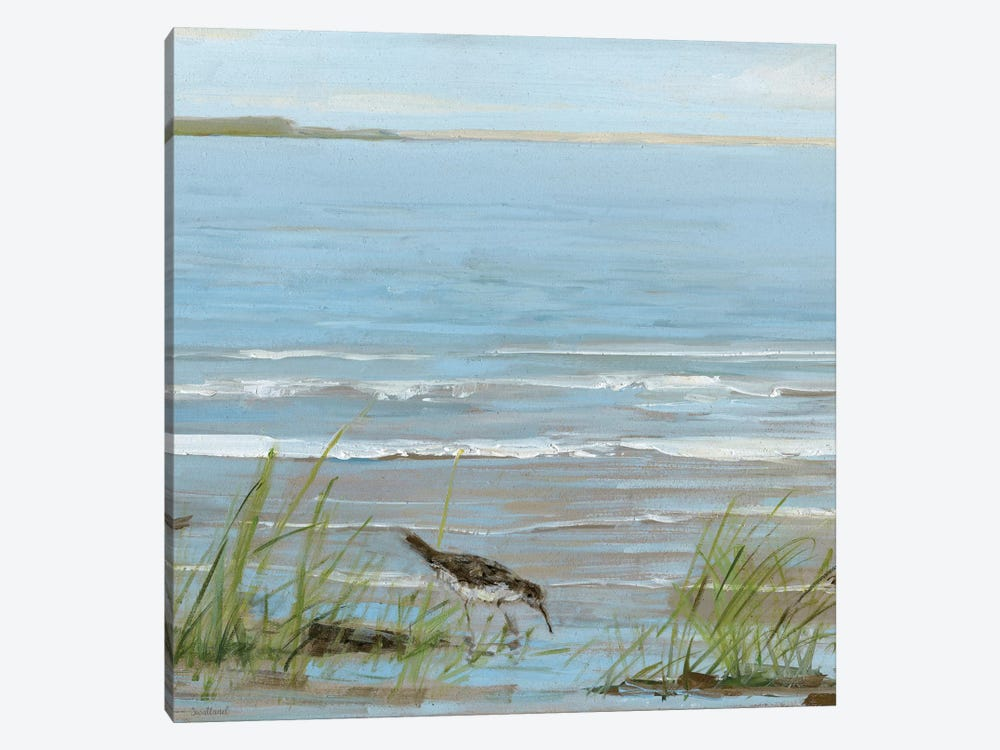 Afternoon On The Shore II by Sally Swatland 1-piece Canvas Wall Art