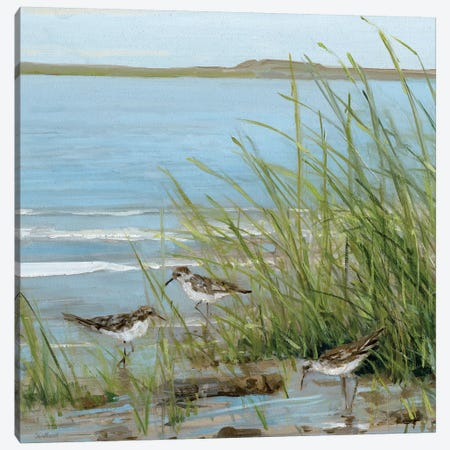 Afternoon On The Shore III Canvas Print #SWA3} by Sally Swatland Canvas Wall Art