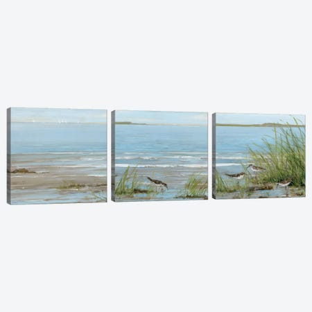 Afternoon On The Shore Triptych Canvas Print Set #SWA3HSET001} by Sally Swatland Canvas Print