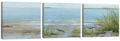 Afternoon On The Shore Triptych Canvas Art Print