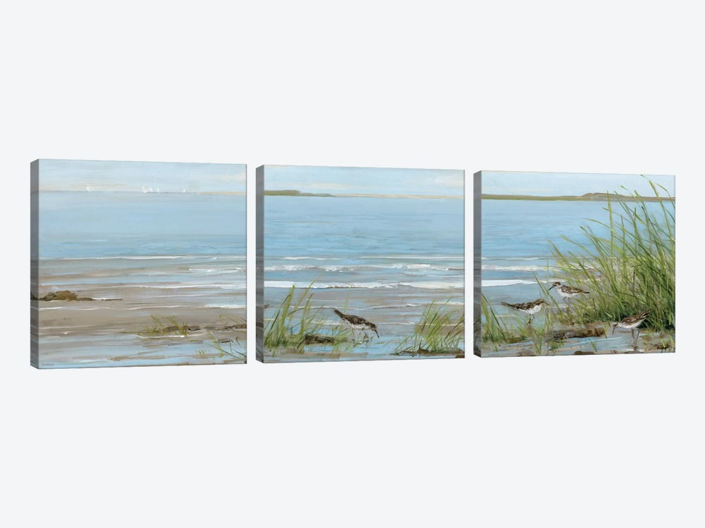 Afternoon On The Shore Triptych by Sally Swatland 3-piece Canvas Print