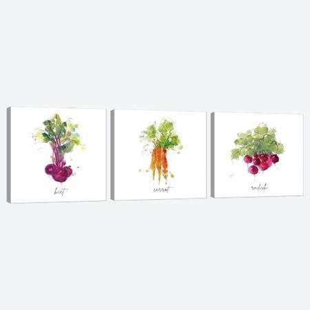 Sketch Kitchen Beet Canvas Print Set #SWA3HSET002} by Sally Swatland Canvas Print