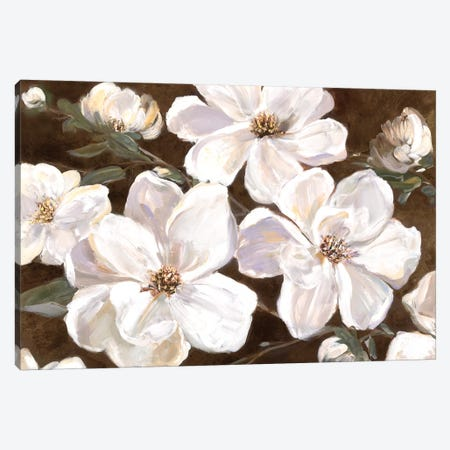 White Chocolate Blooms I Canvas Print #SWA42} by Sally Swatland Canvas Art