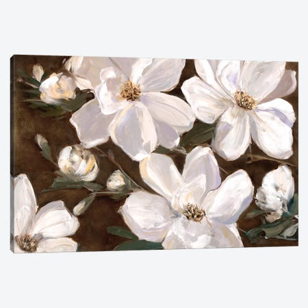 White Chocolate Blooms II Canvas Print #SWA43} by Sally Swatland Canvas Art