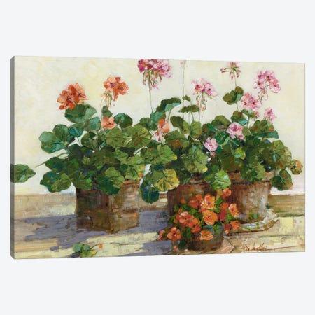 Veranda In Positano I Canvas Print #SWA58} by Sally Swatland Art Print
