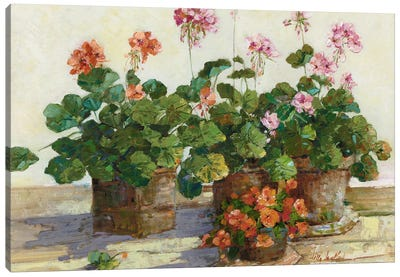 Veranda In Positano I Canvas Art Print