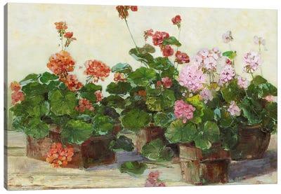 Veranda In Positano II Canvas Art Print