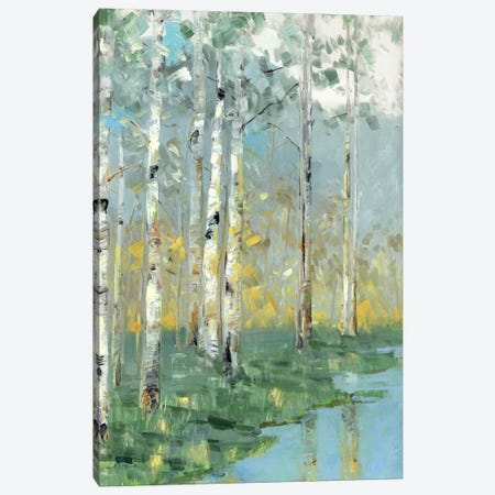 Birch Reflections III Canvas Print #SWA65} by Sally Swatland Art Print