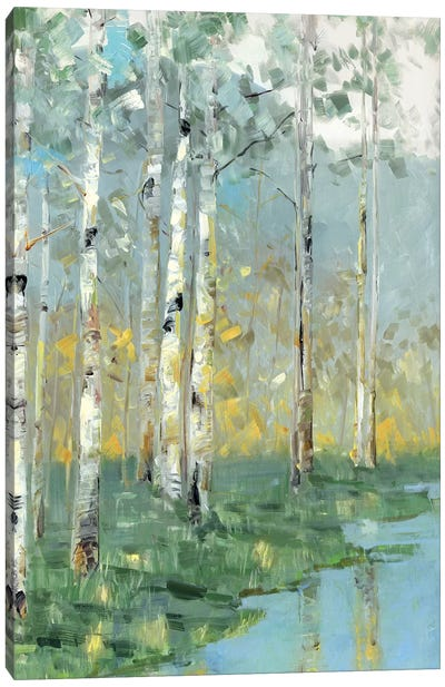 Birch Reflections III Canvas Art Print