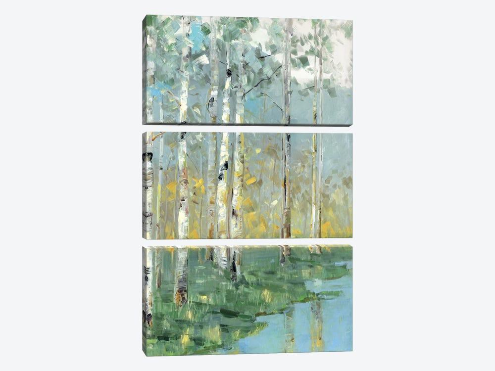 Birch Reflections III by Sally Swatland 3-piece Canvas Wall Art