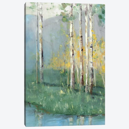 Birch Reflections IV Canvas Print #SWA66} by Sally Swatland Art Print