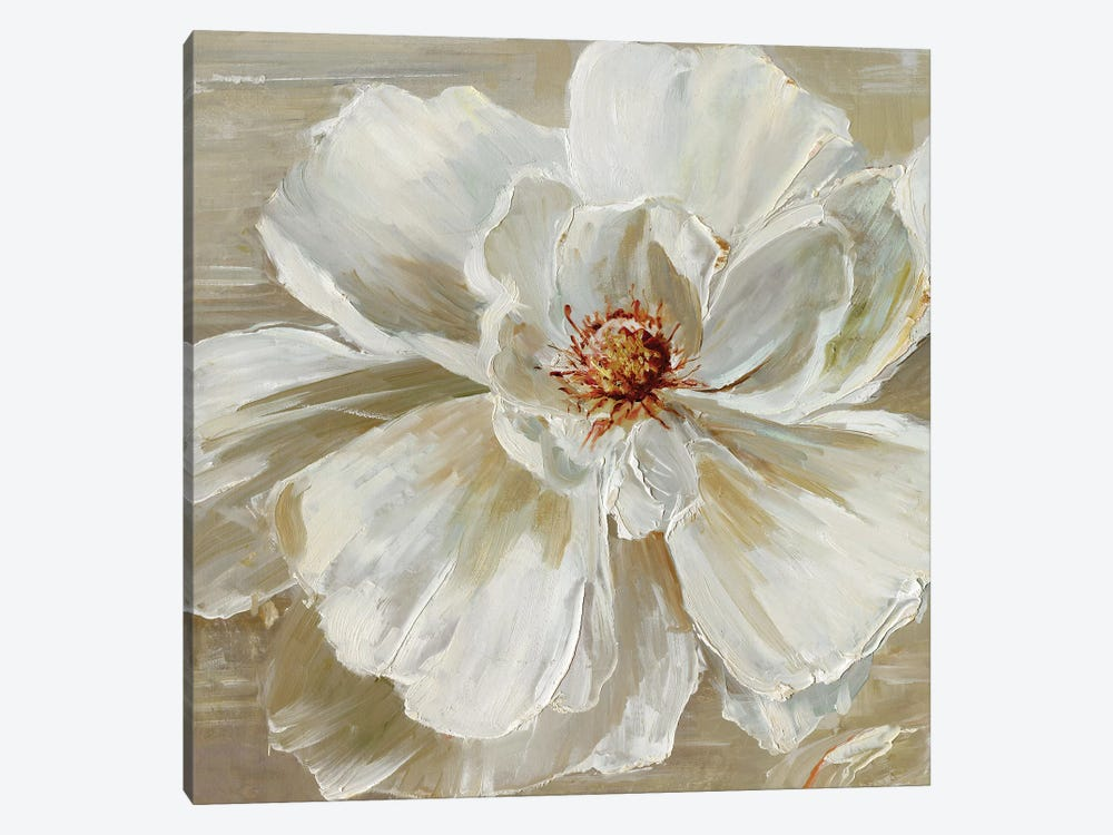 Bloomin' Beauty I by Sally Swatland 1-piece Canvas Wall Art