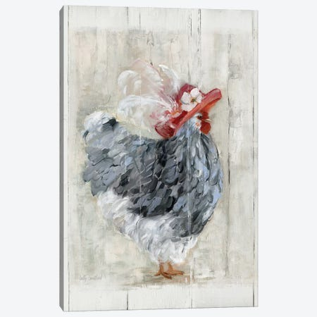 Sunday Best Hen Canvas Print #SWA78} by Sally Swatland Art Print