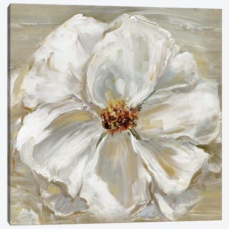 Bloomin' Beauty II Canvas Print #SWA7} by Sally Swatland Canvas Art Print
