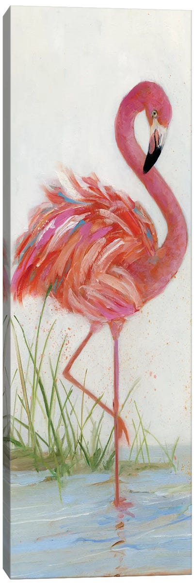 Flamingo I Canvas Art Print