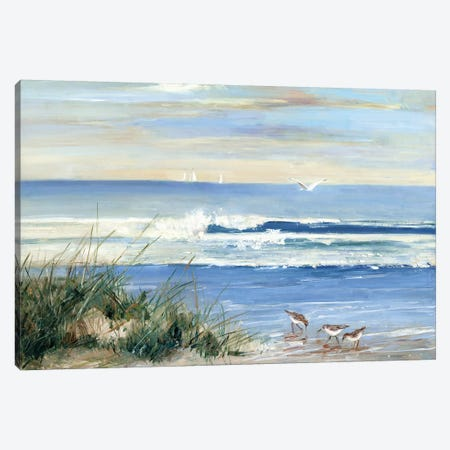 Beach Combers Canvas Print #SWA91} by Sally Swatland Art Print