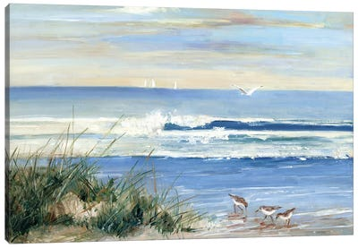 Beach Combers Canvas Art Print