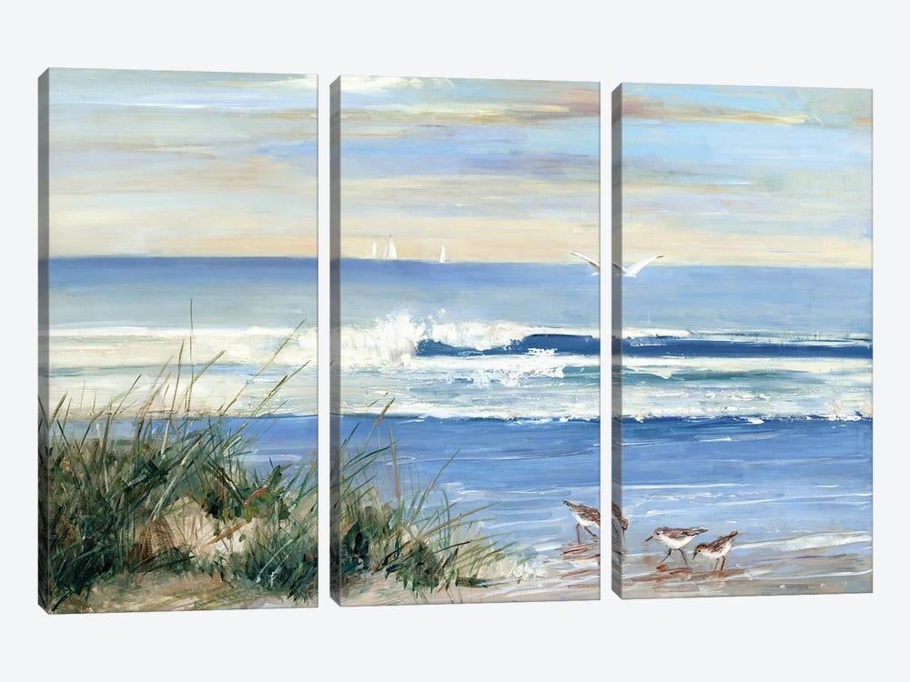 Beach Combers by Sally Swatland 3-piece Canvas Art Print