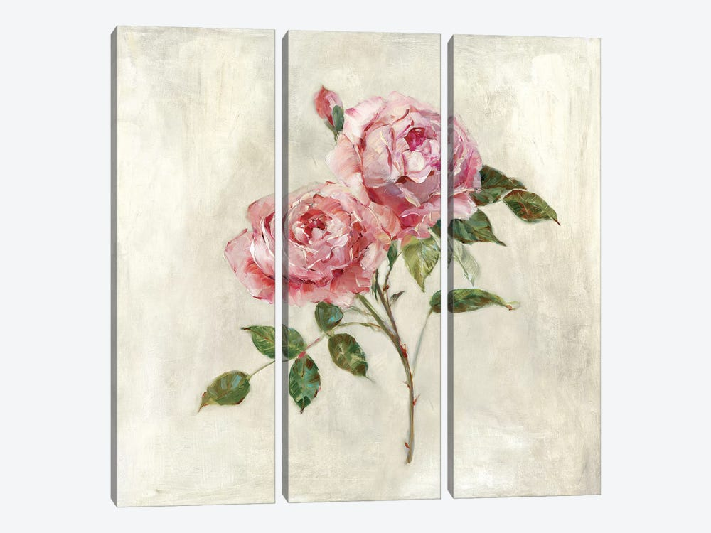 Botanical Beauties I by Sally Swatland 3-piece Canvas Art