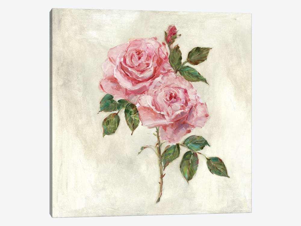 Botanical Beauties II by Sally Swatland 1-piece Canvas Print
