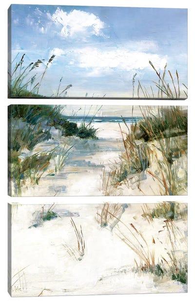 Dune View Canvas Art Print
