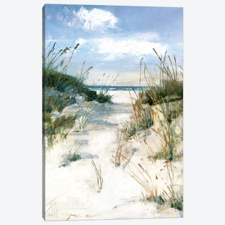Dune View Canvas Print #SWA99} by Sally Swatland Art Print