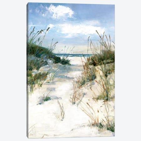 Dune View Canvas Print #SWA99} by Sally Swatland Art Print