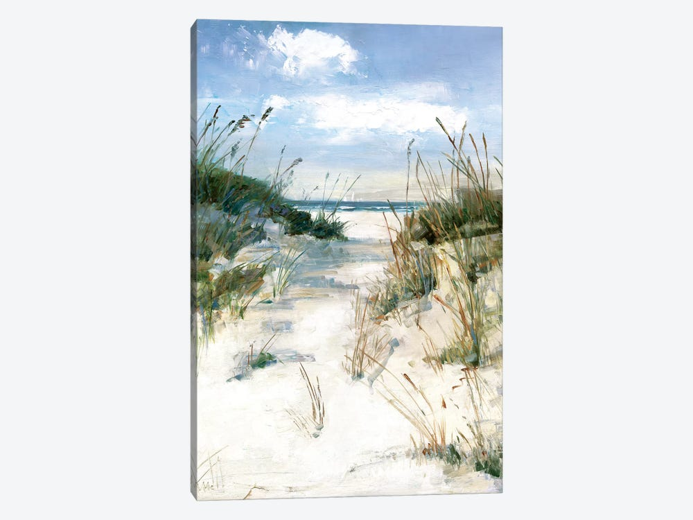 Dune View Canvas Print By Sally Swatland Icanvas