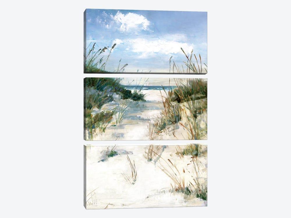 Dune View by Sally Swatland 3-piece Art Print
