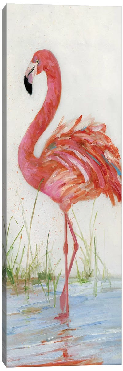Flamingo II Canvas Art Print