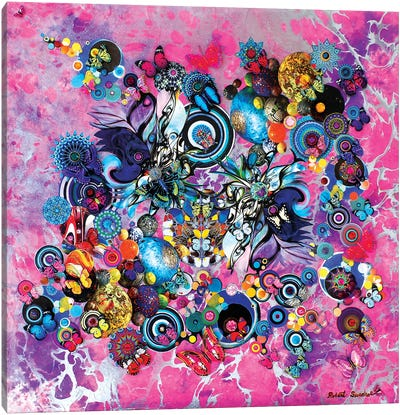 Butterflies Of The Universe Canvas Art Print