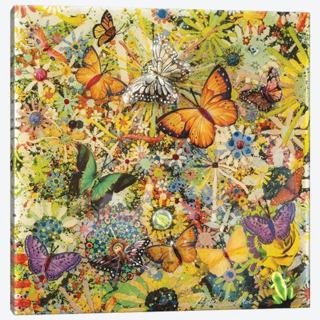 Butterfly Garden Canvas Print #SWD18} by Robert Swedroe Canvas Wall Art