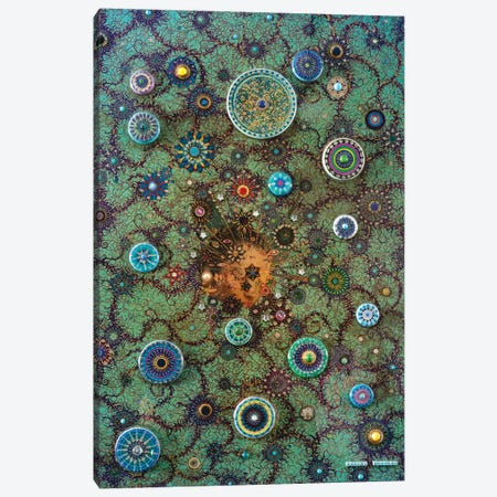 Alien Constellation Canvas Print #SWD5} by Robert Swedroe Canvas Art