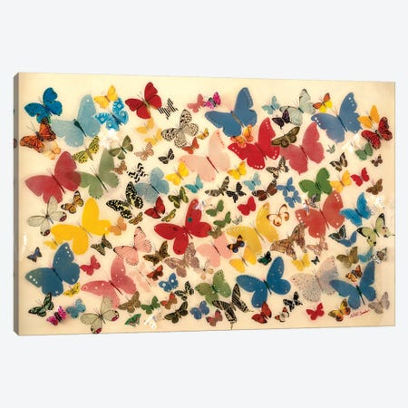 Papillon Canvas Print #SWD71} by Robert Swedroe Canvas Wall Art
