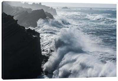 Winter storm watching, Shore Acres State Park, Southern Oregon Coast, USA Canvas Art Print