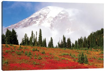 Fog-Covered Mount Rainier With An Autumn Landscape In The Foreground, Mount Rainier National Park, Washington, USA Canvas Art Print