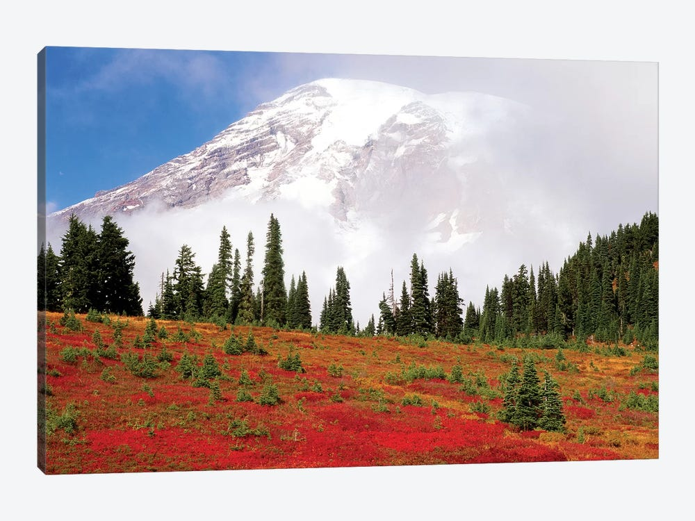 Fog-Covered Mount Rainier With An Autumn Landscape In The Foreground, Mount Rainier National Park, Washington, USA by Stuart Westmorland 1-piece Canvas Art Print