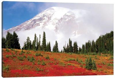 Fog-Covered Mount Rainier With An Autumn Landscape In The Foreground, Mount Rainier National Park, Washington, USA Canvas Art Print