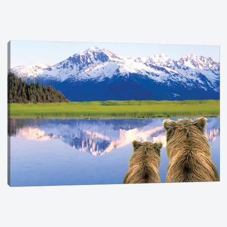 Alaska Brown Bears, Alaska. Canvas Print #SWE13} by Stuart Westmorland Art Print