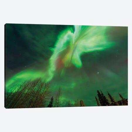 Aurora borealis, near Fairbanks, Alaska Canvas Print #SWE14} by Stuart Westmorland Canvas Artwork
