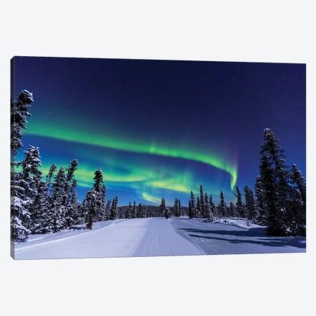 Aurora borealis, Northern Lights near Fairbanks, Alaska I Canvas Print #SWE15} by Stuart Westmorland Canvas Wall Art