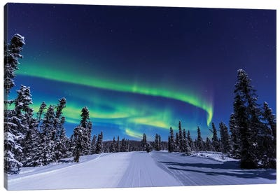 Aurora borealis, Northern Lights near Fairbanks, Alaska I Canvas Art Print