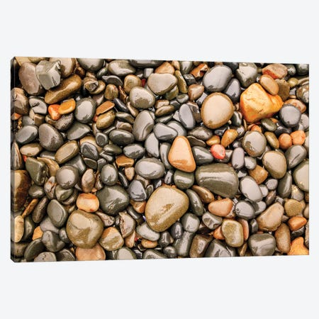 Close-up of beach rocks, Oregon I Canvas Print #SWE19} by Stuart Westmorland Canvas Print