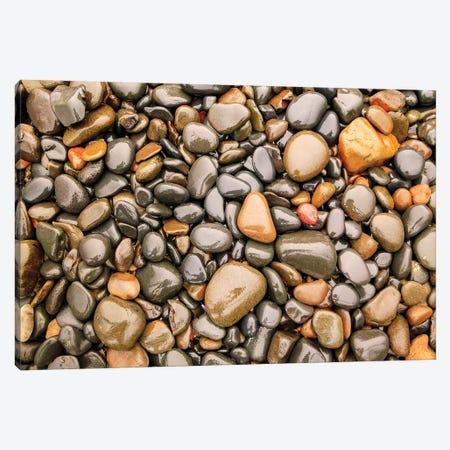 Close-up of beach rocks, Oregon I Canvas Print #SWE19} by Stuart Westmorland Canvas Print