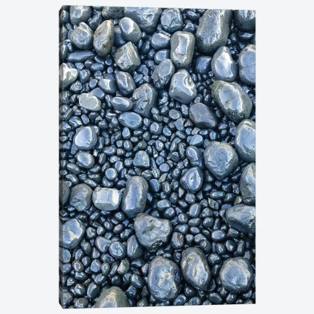 Close-up of beach rocks, Oregon II Canvas Print #SWE20} by Stuart Westmorland Canvas Art
