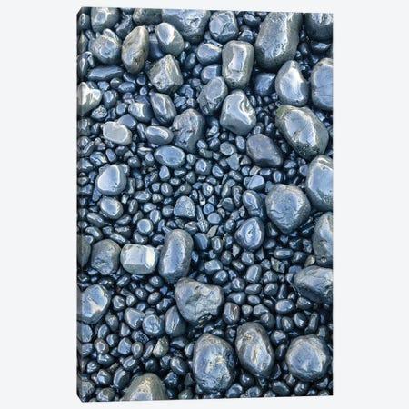 Close-up of beach rocks, Oregon II Canvas Print #SWE20} by Stuart Westmorland Canvas Art