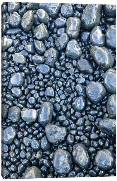 Close-up of beach rocks, Oregon II Canvas Art Print