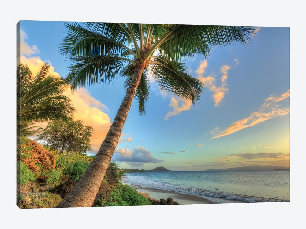 Sunset at beach, Wailea, Maui, Hawaii, USA by Stuart Westmorland 1-piece Canvas Artwork