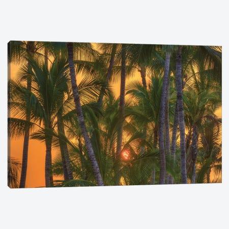 Anaeho'omalu Bay, Kohala Coast, Big Island, Hawaii, USA Canvas Print #SWE30} by Stuart Westmorland Canvas Art Print